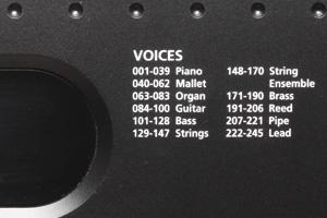 KP70 - Voices