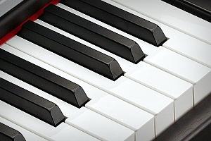 MP120 keys